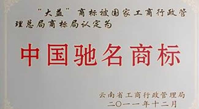 云南大益茶业集团